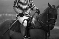 Polo Referee #2 - bw