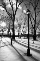 Lamppost - City Park