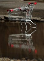 Cart Reflection
