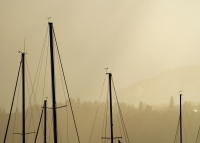 Five Masts