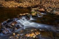 Mill Creek - Autumn
