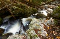 Mill Creek - Autumn #2