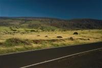 Maui Dry Side