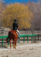 Hunter Ring