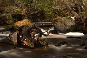 Mill Creek - alt