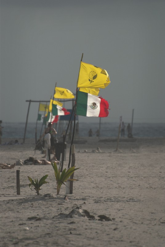 Mexican Flags