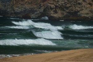 Grey Whale State Beach