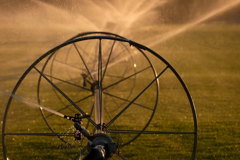 Irrigation at Sunset #1
